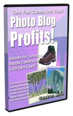 photo blog profits